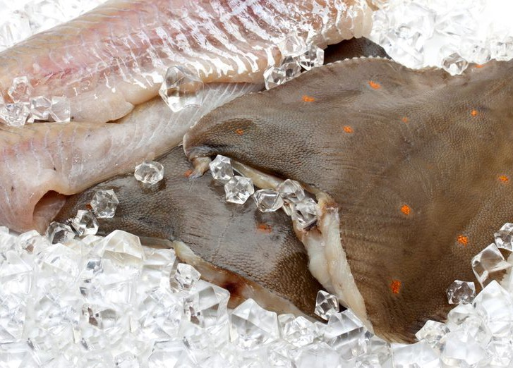 Приморские рыбаки увеличили вылов камбалы и палтуса